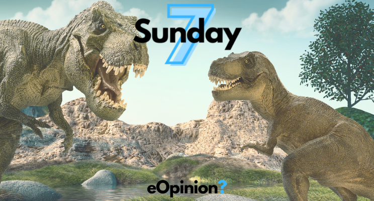 Sunday 7 - Issue #11   eOpinion